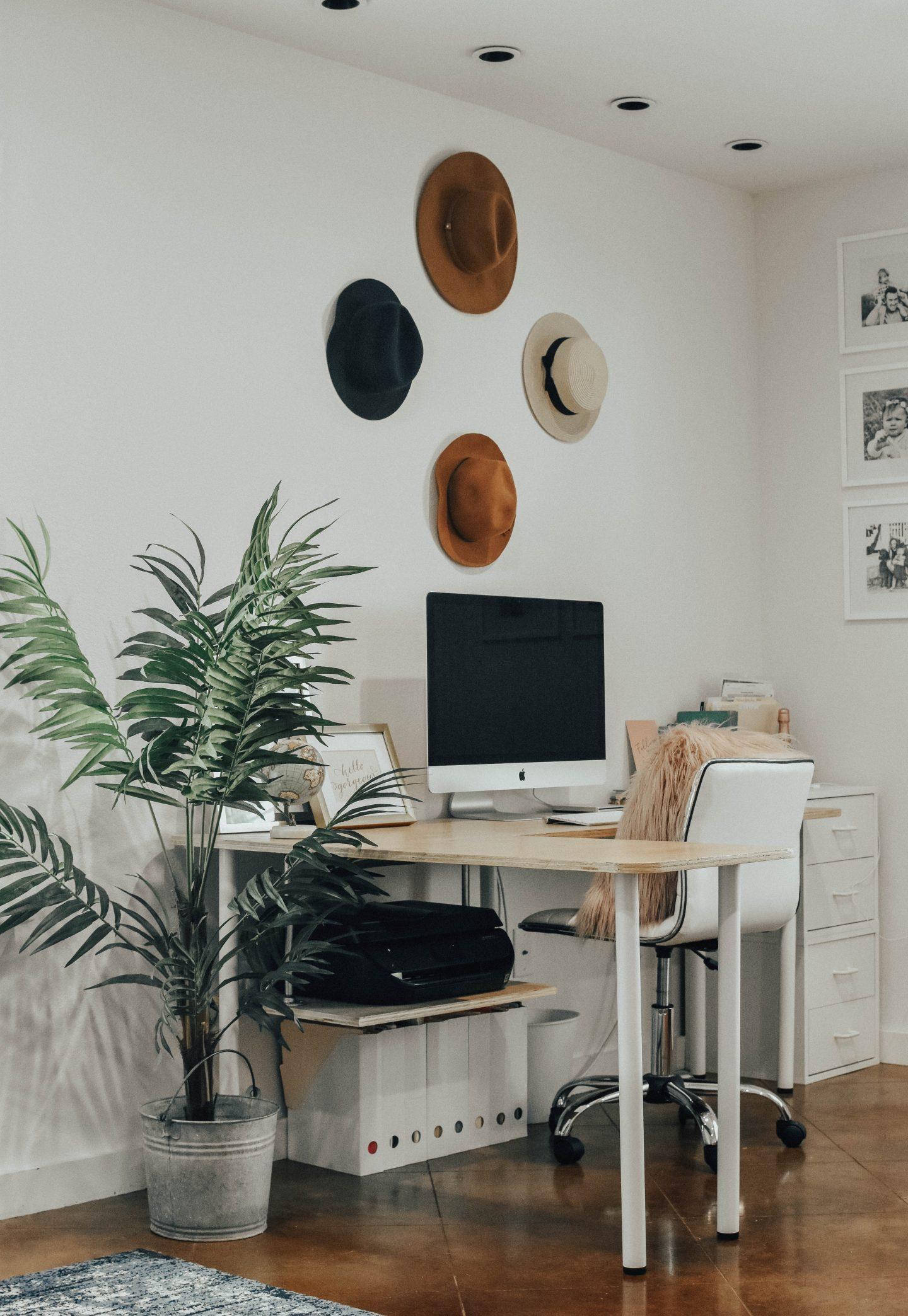 Office Setup + Plants I Canu0027t Kill